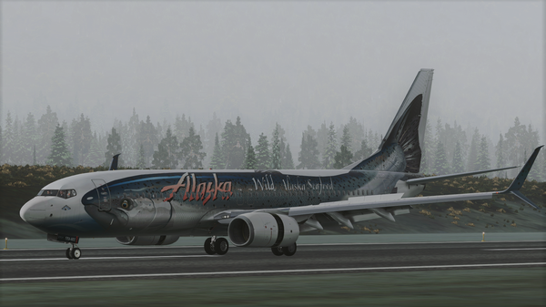 Alaska 738 landing at Ketchikan